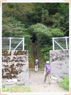 20120815-17saiyusou_8-1.jpg